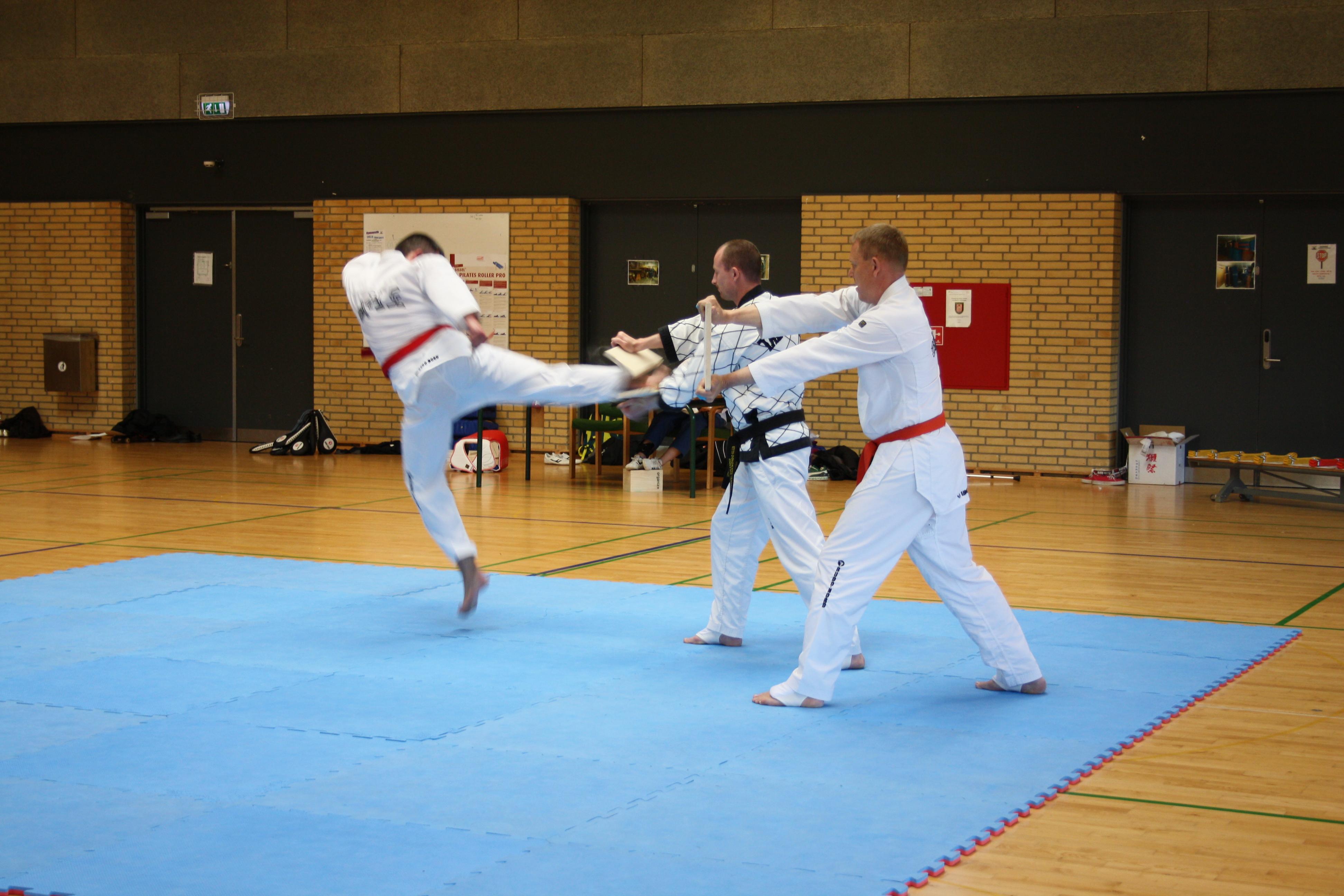 Taekwondo Graduering April 2015 058