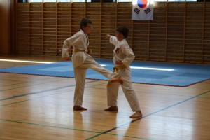 taekwondo graduering april 2015 133