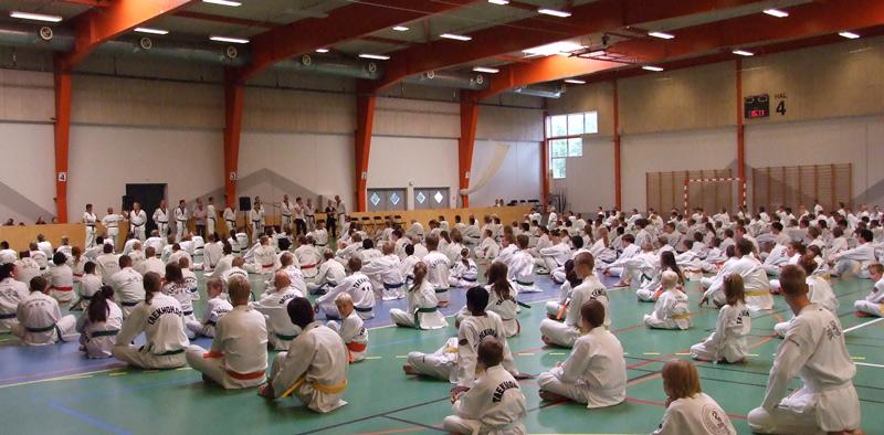Taekwondo Summer Camp 2018