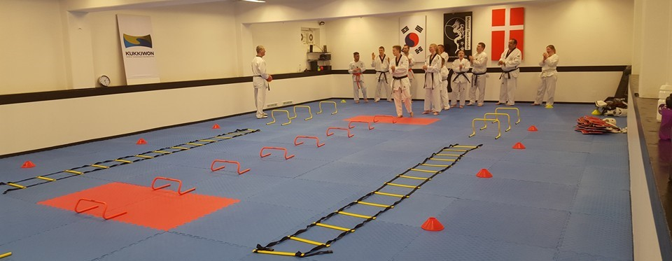 Vi Besøger Musool Taekwondo I Holbæk