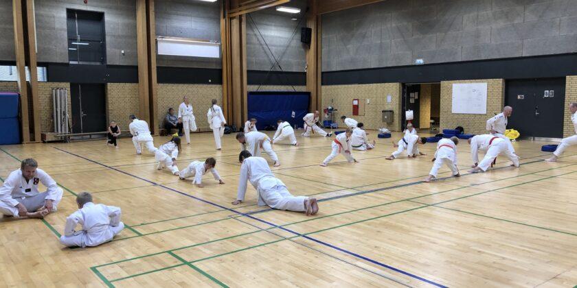 Genoptagelse af indendørstræning